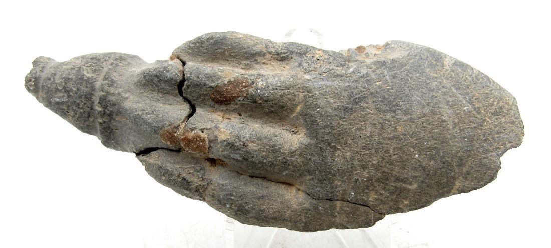 Gandhara Carved Stone Hand of buddha