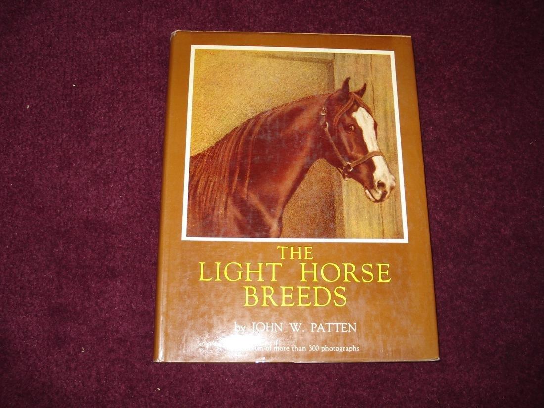 Light Horse Breeds Origin, Characteristics, Principal