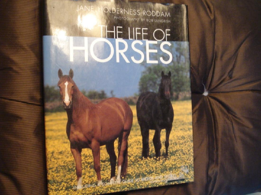 The Life of Horses Complete Guide to Breeds