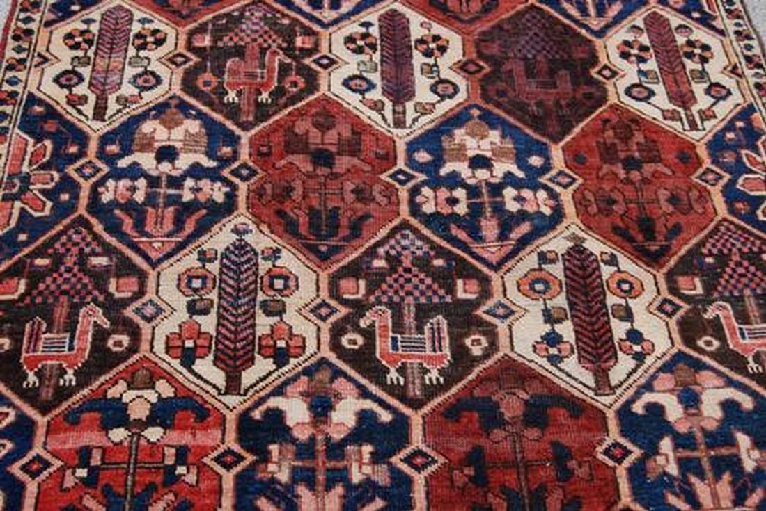 Semi Antique Persian Bakhtiari Desert Rug 4.6x8.10 - 2