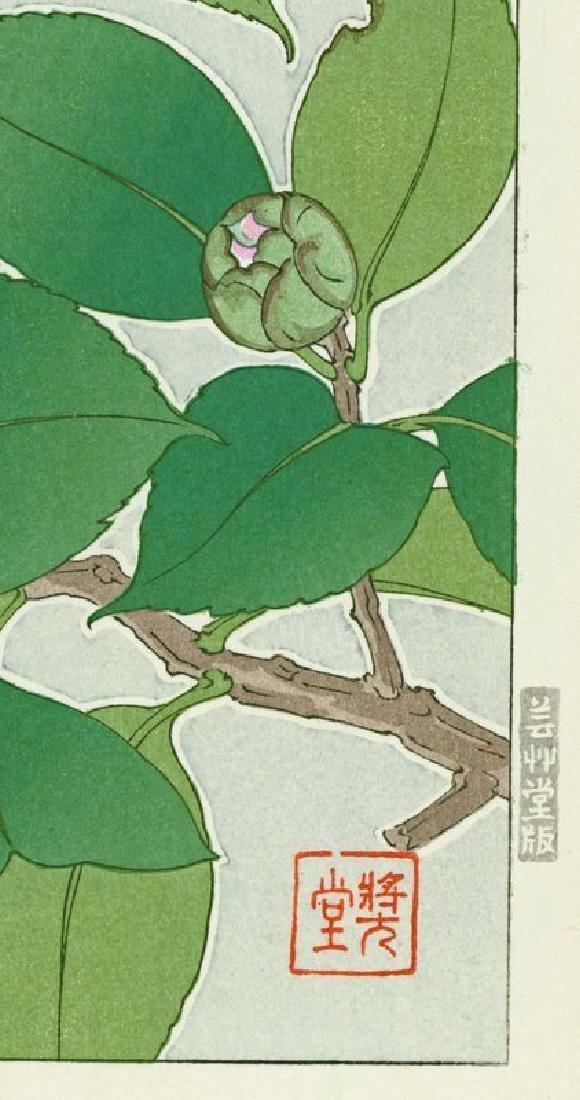 Shodo Kawarazaki Woodblock Camellias (Tsubaki) - 2