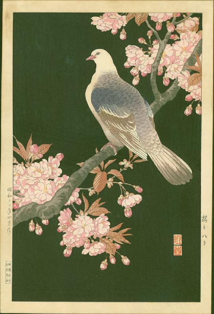 Nishimura Hodo Woodblock Pigeon and Cherry