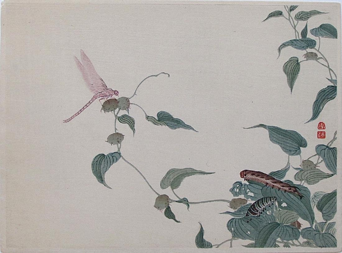 Mori Shunkei Woodblock Dragonfly