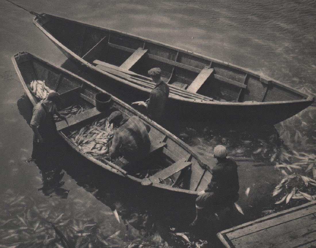 ADOLF FASSBENDER - Fish A'Plenty