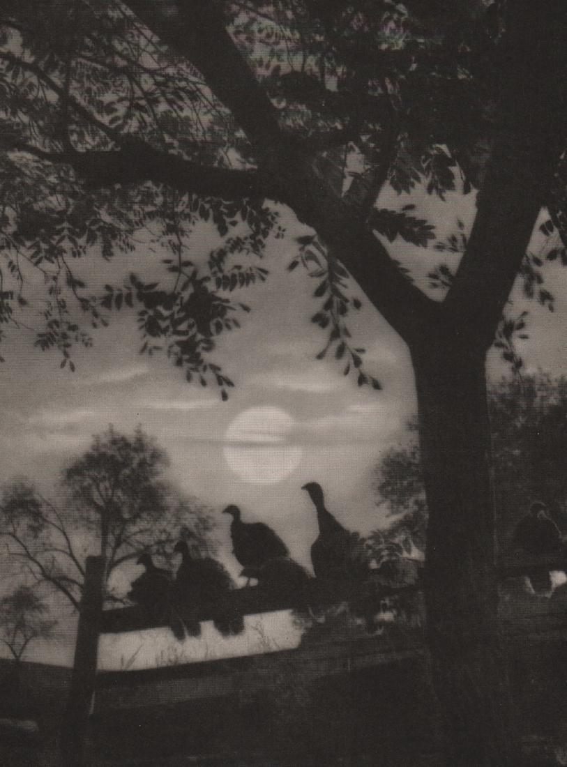 CARL SEMON -  Turkeys in the Moonlight