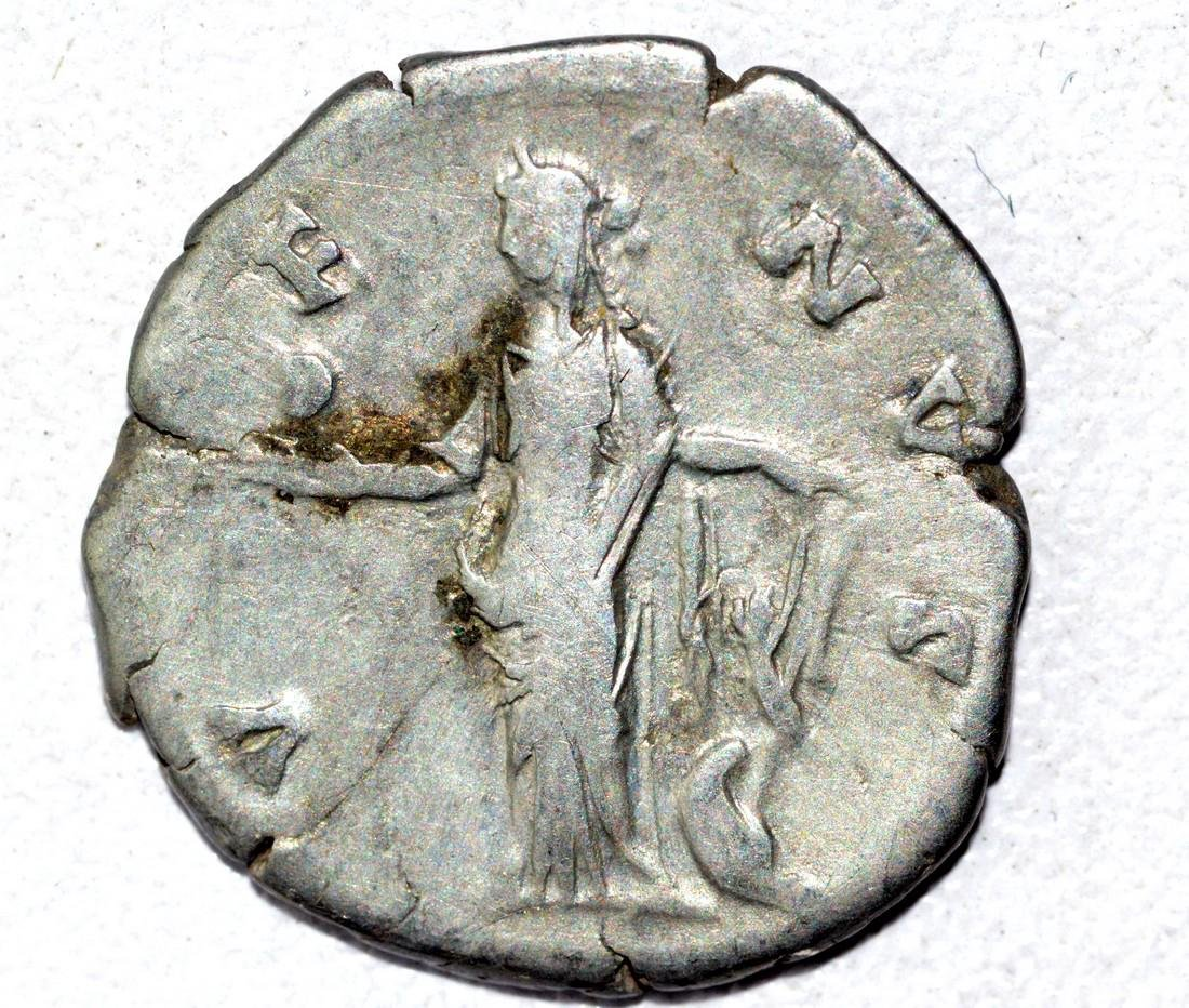 Faustina AR Denarius, rv. Venus - 2
