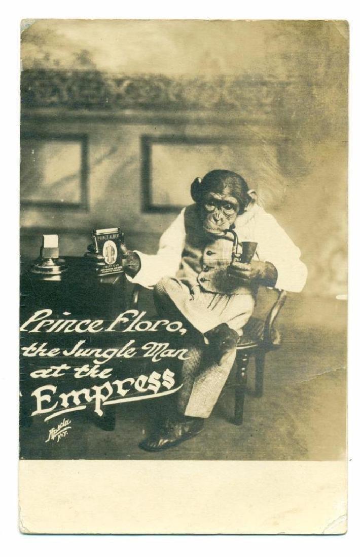 1913 Circus Vaudeville Monkey Prince Floro Tobacco Ad - 2