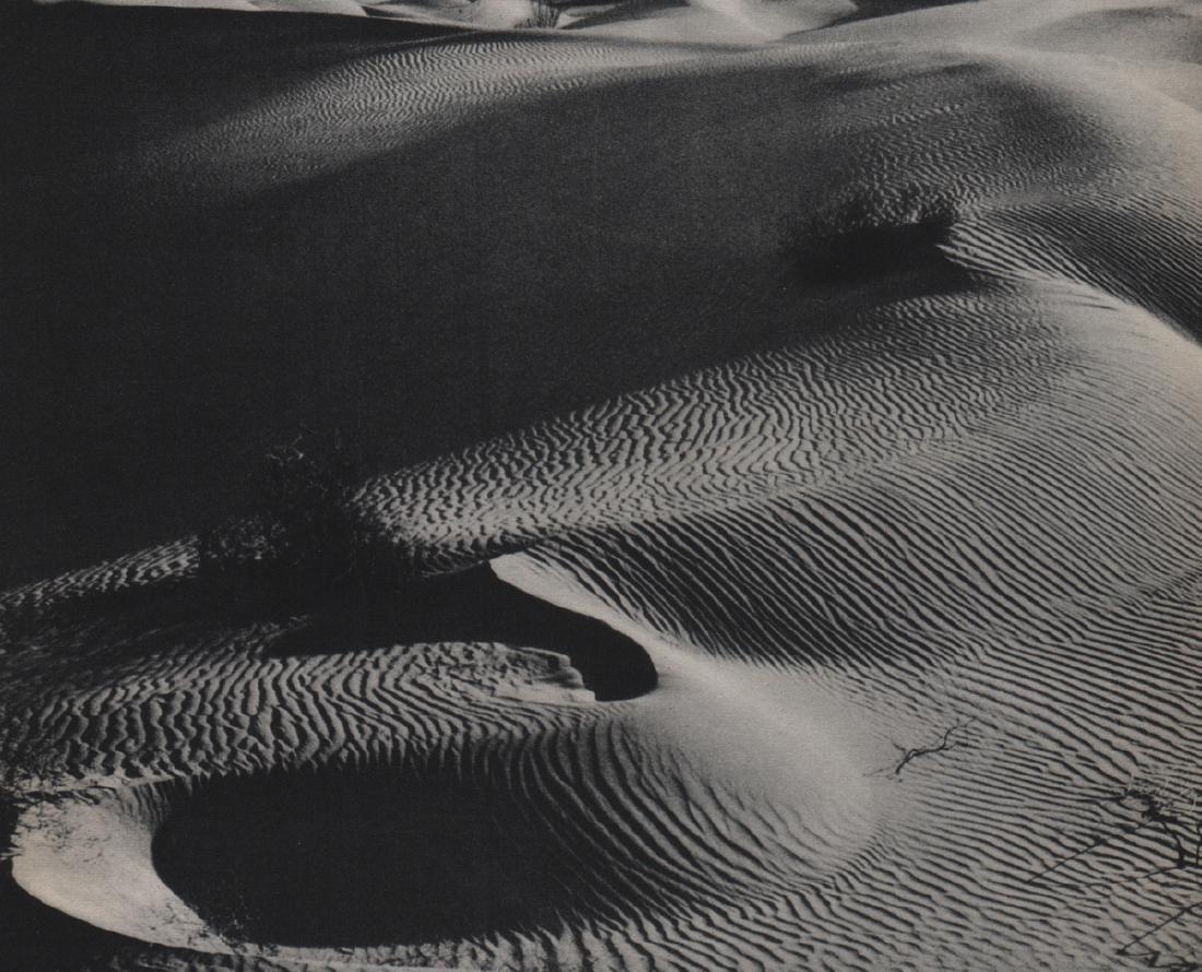 E.W. BLEW - Sand Dunes