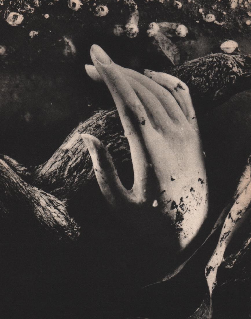 RUTH BERNHARD - Dead Hand