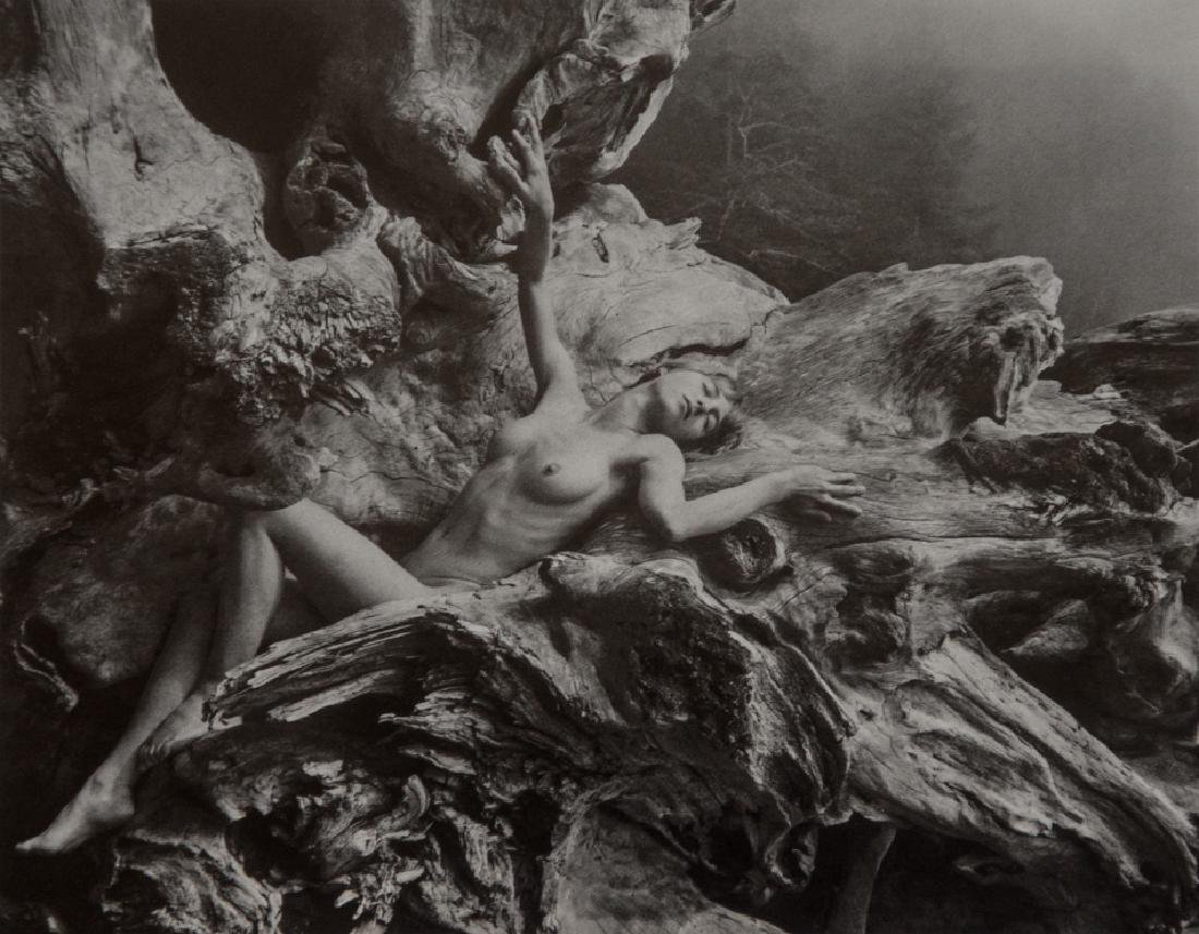 JAMES NEWBERRY - Nude in Nature