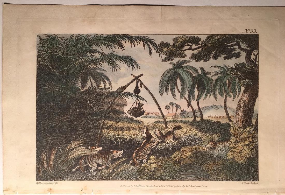Williamson, Thomas & Samuel Howitt Hunting Jackals