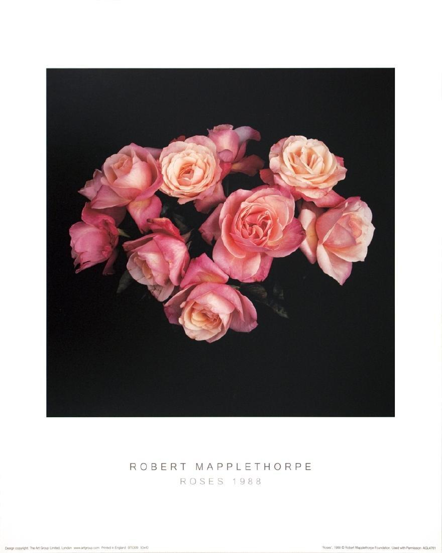 Robert Mapplethorpe Offset Lithograph Roses (1988)