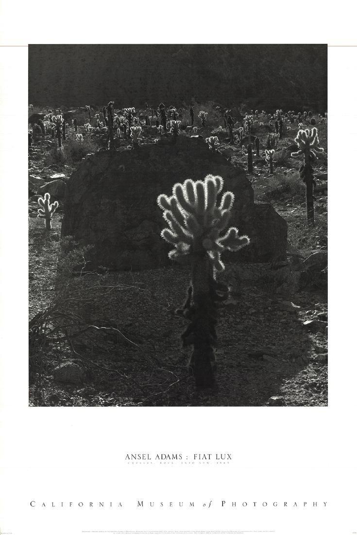 Ansel Adams Offset Lithograph Chollas Rock Into Sun