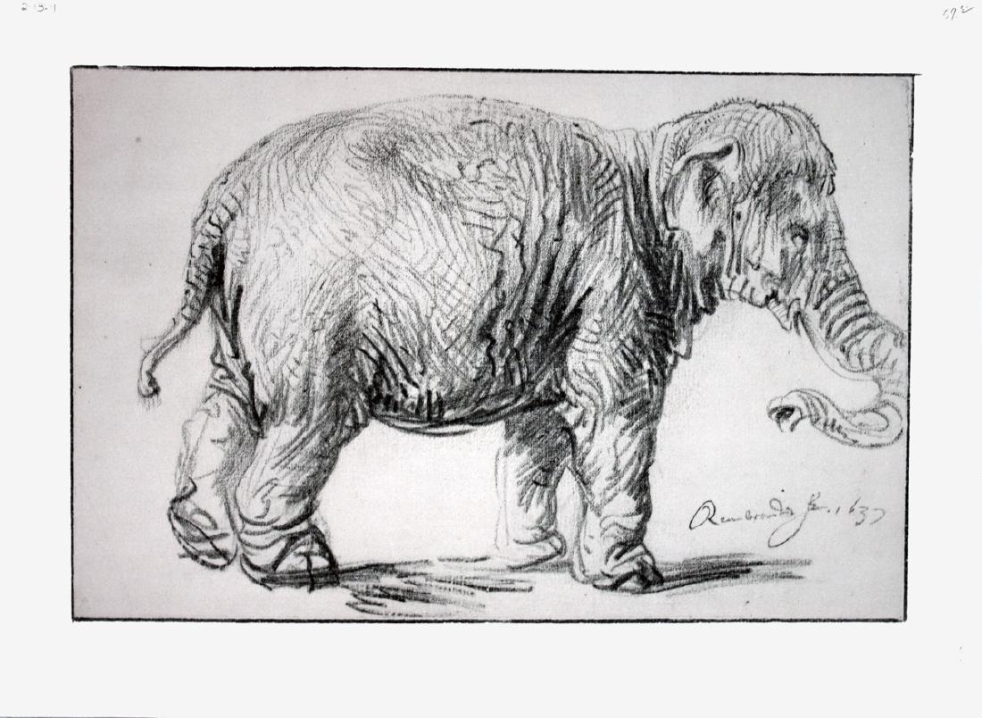 Albrecht Durer Lithograph Elephant