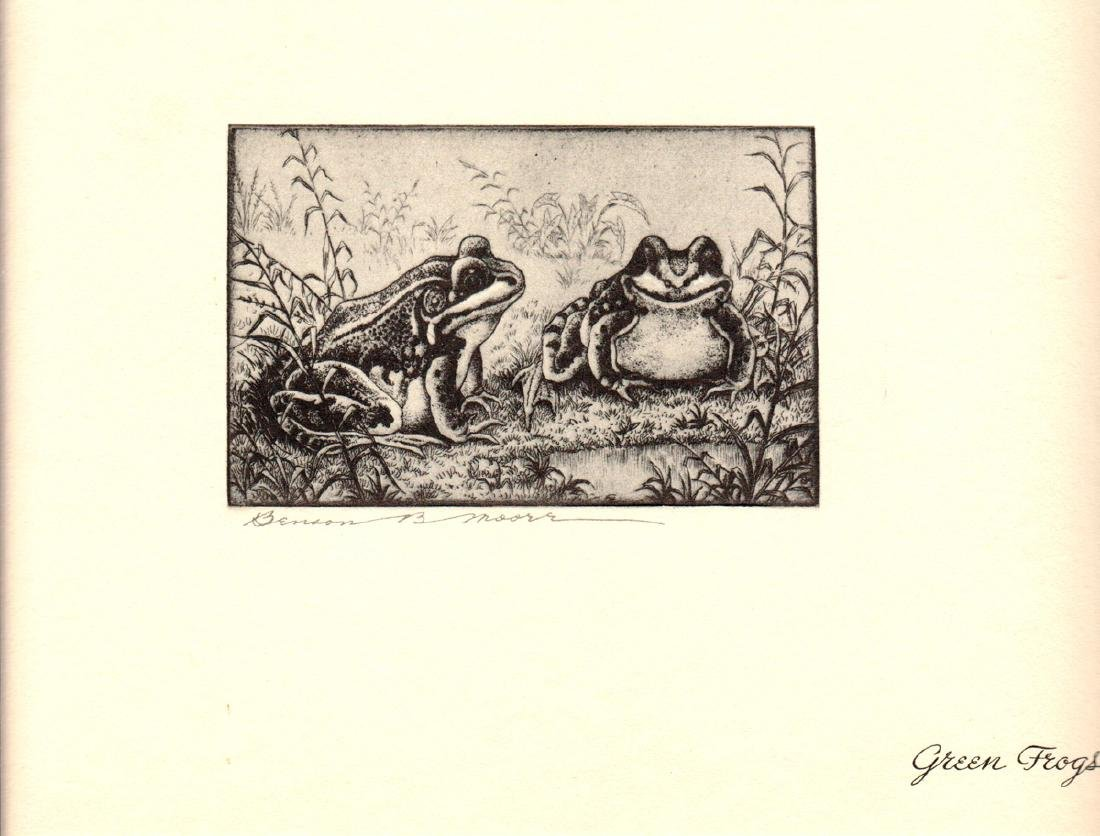 Benson B Moore Offset Lithograph Green Frogs
