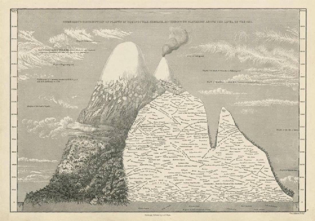 Sidney Hall: Antique Map Humboldt's Plant Distribution