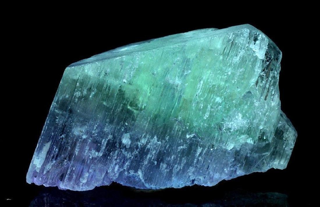 186 Gram V Shape Bi Color Natural Kunzite Crystal - 4