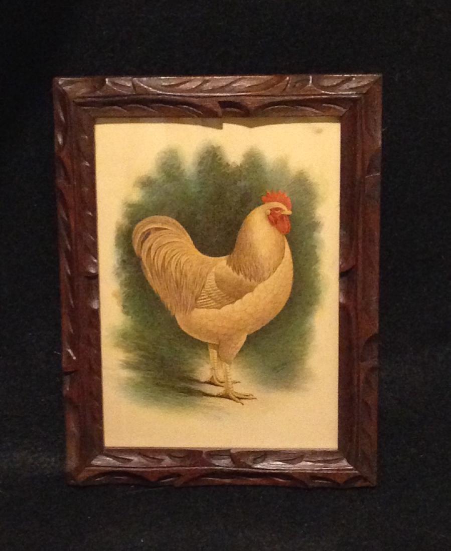 Chicken Lithograph 1900