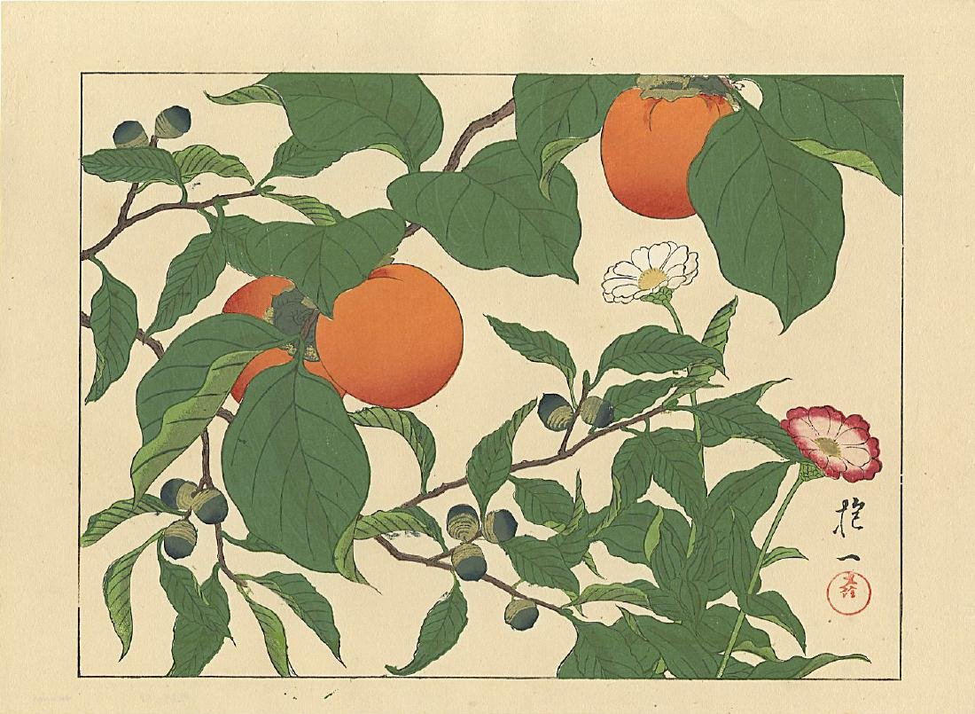 Unidentified Woodblock Acorns and Persimmons