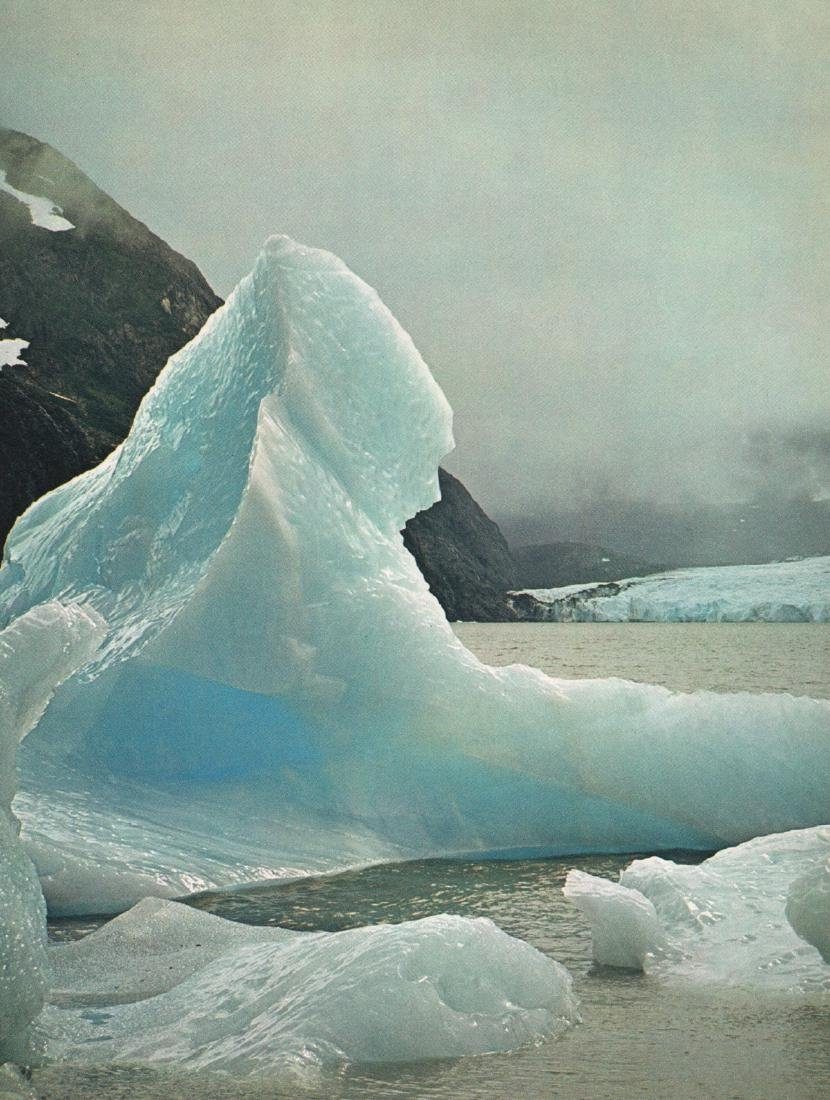 WILLIS PETERSON - Alaskan Glacier
