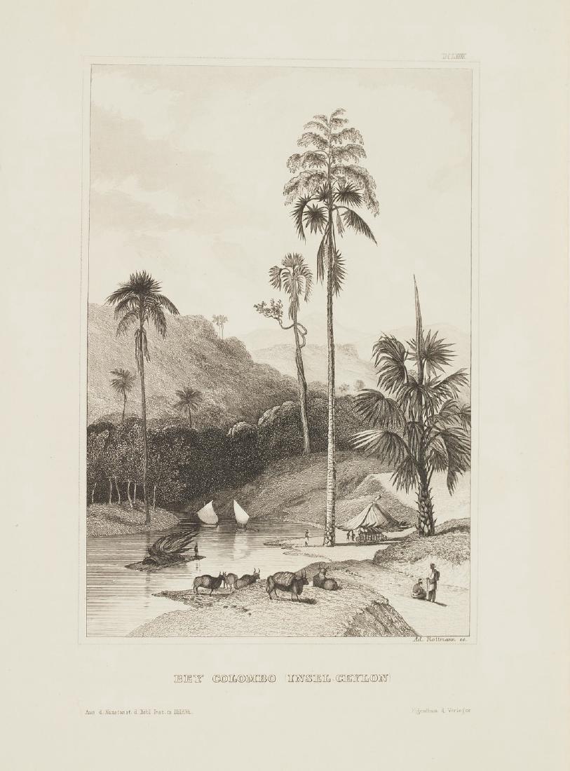 Hildburghausen: Antique View Colombo Bey Sri Lanka 1860