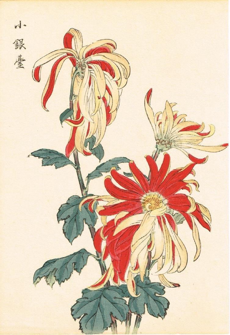 Hasegawa Keika Woodblock 100 Chrysanthemums