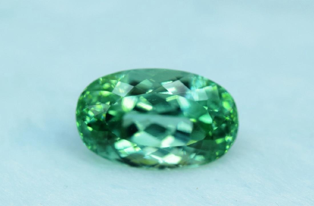 19.70 Carat Loose Lush Green Color Flawless Kunzite - 3