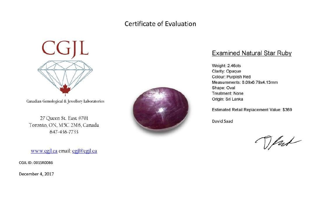 2.46 Carat Loose Oval Star Ruby - 2