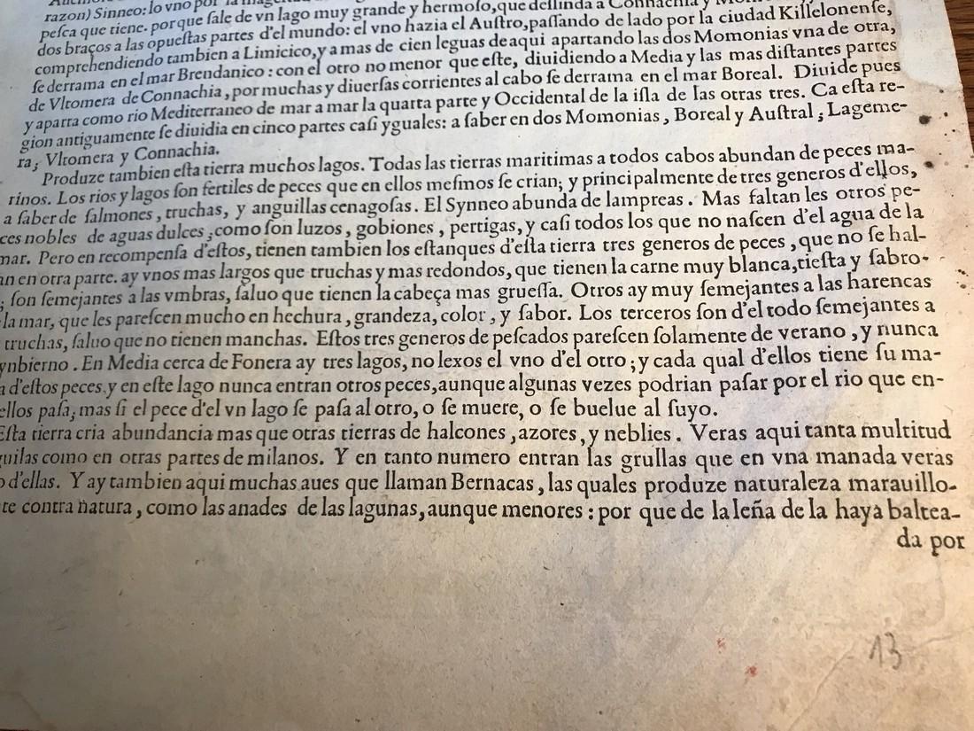 Ortelius Antique Map: Hiberniae Brittannicae Insulae - 5