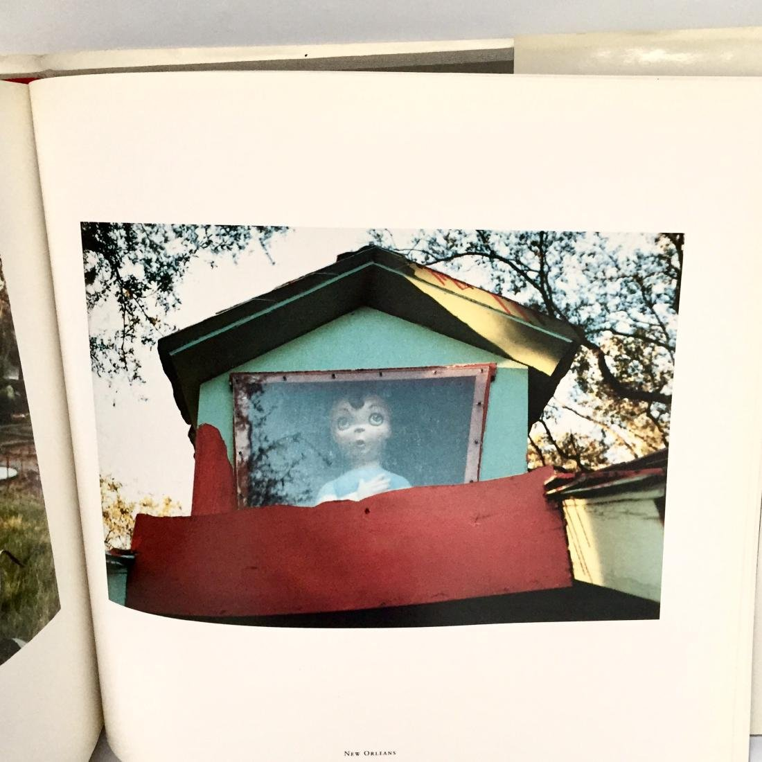 The Democratic Forest William Eggleston First Edition - 3