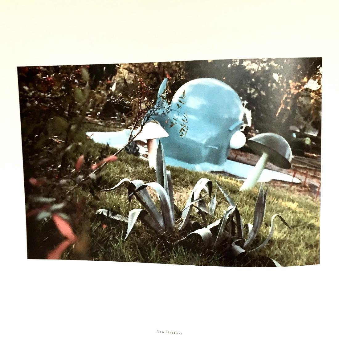 The Democratic Forest William Eggleston First Edition - 4
