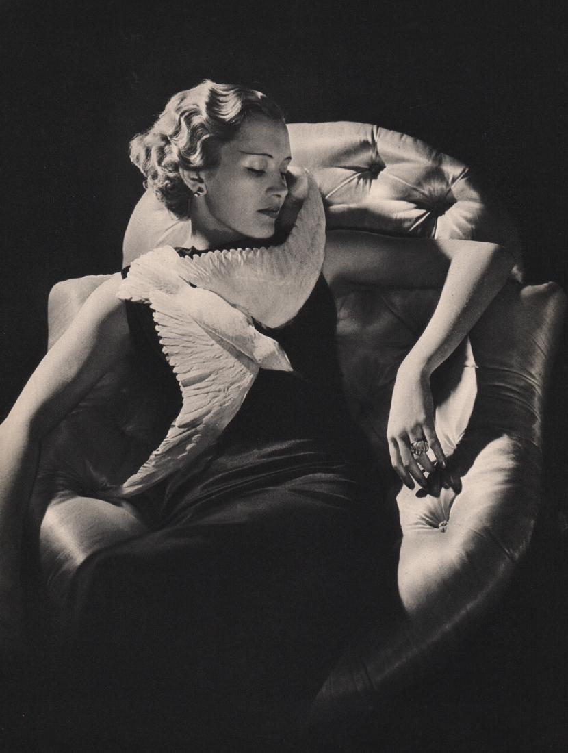 HARRY O. MEERSON - Fashion Model