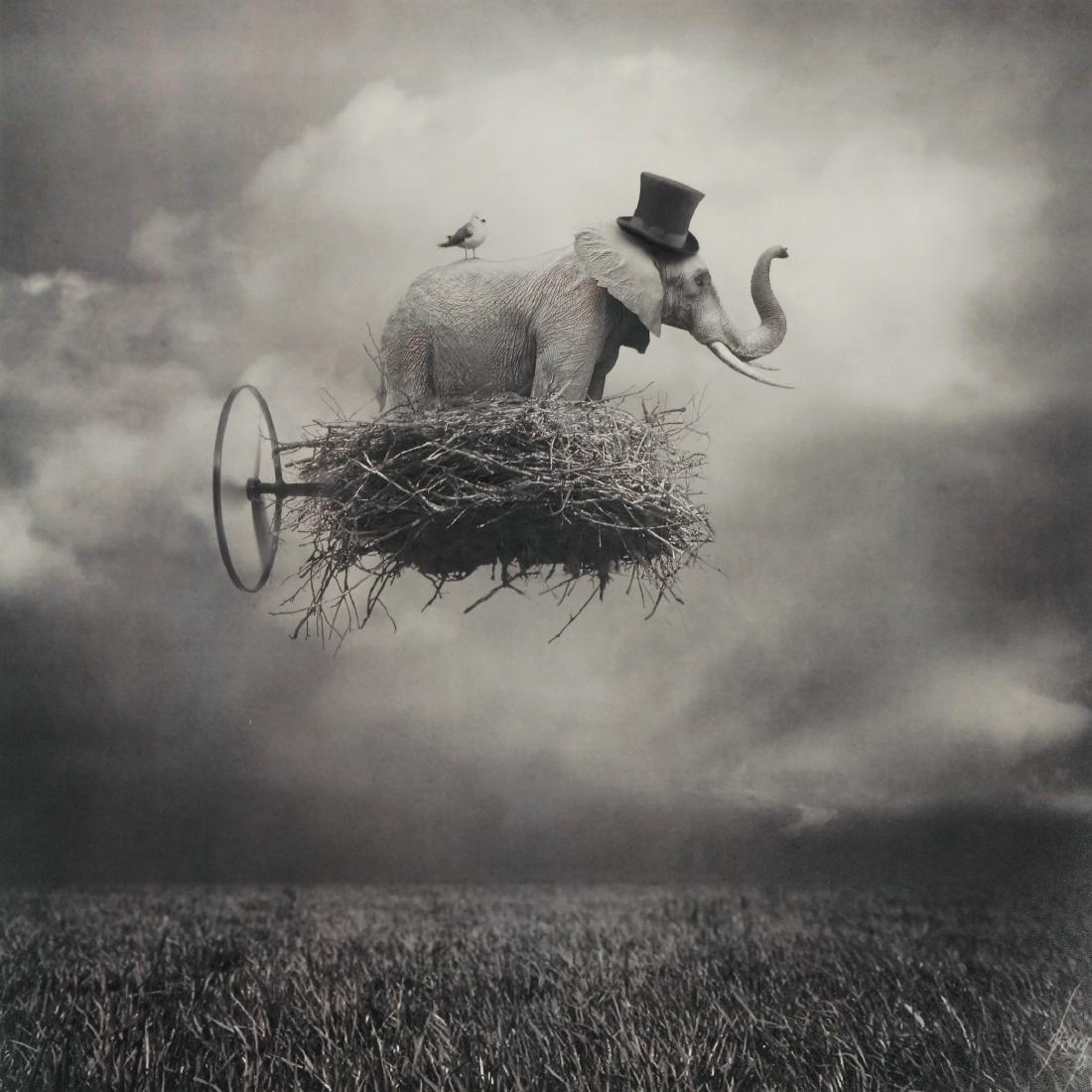 Beata Bieniak Flying Circus Print