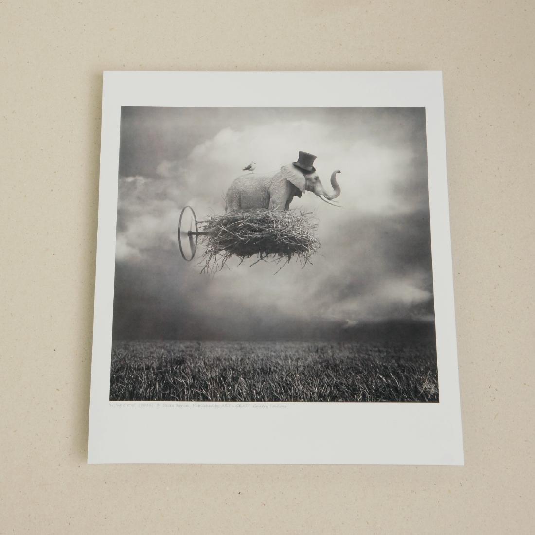 Beata Bieniak Flying Circus Print - 2