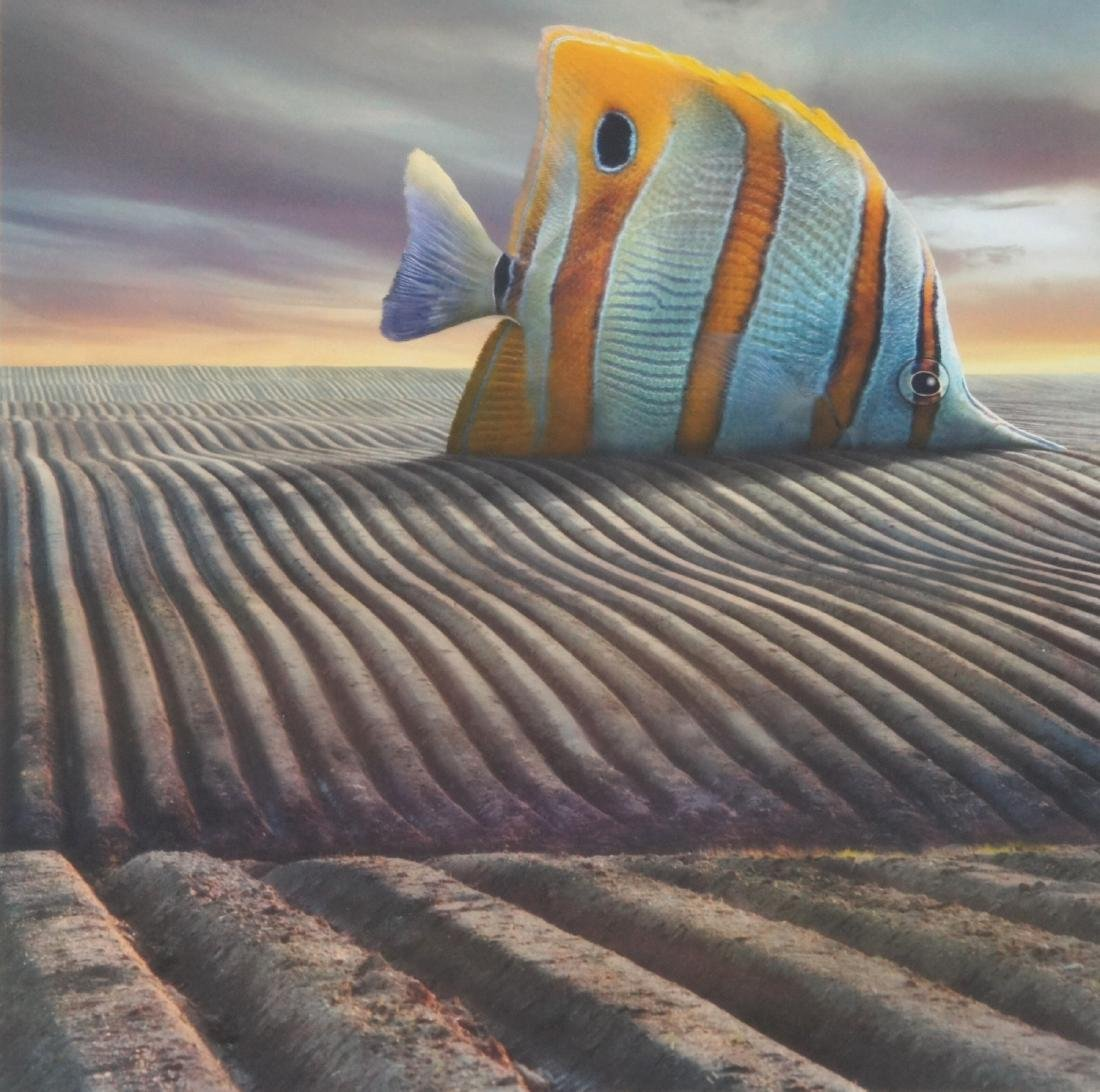 Dariusz Klimczak Big Fish Print