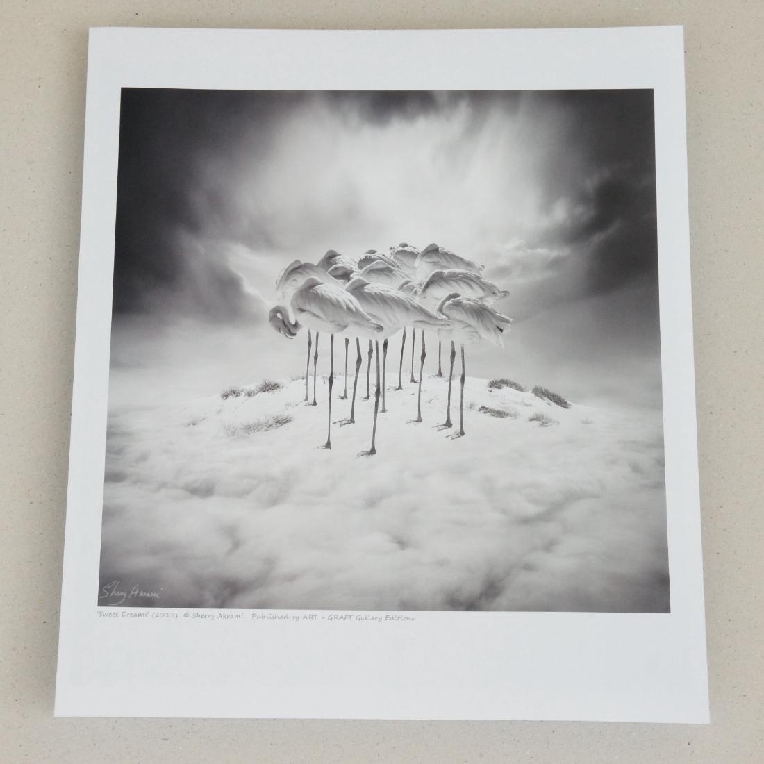 Sherry Akrami Sweet Dreams Print - 2