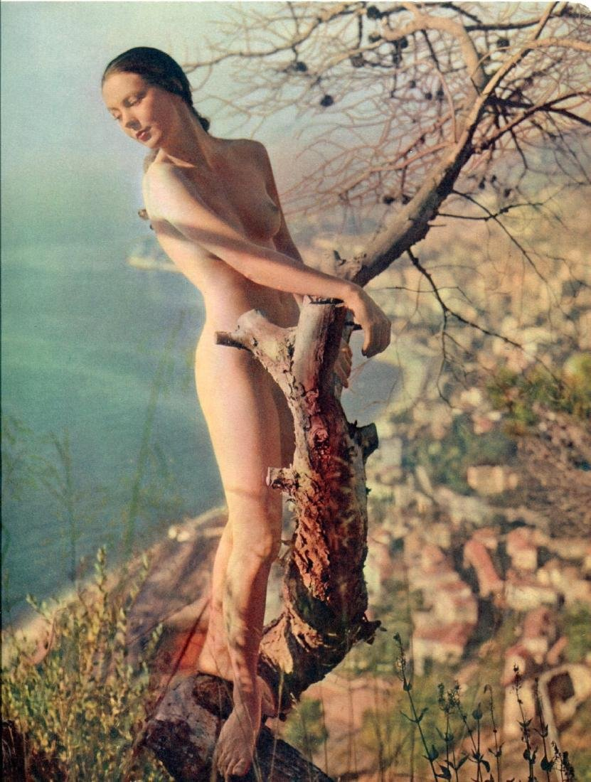 ZOLTAN GLASS - Nude in a Tree
