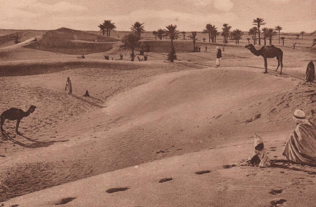 LEHNERT & LANDROCK - Saharan Landscape