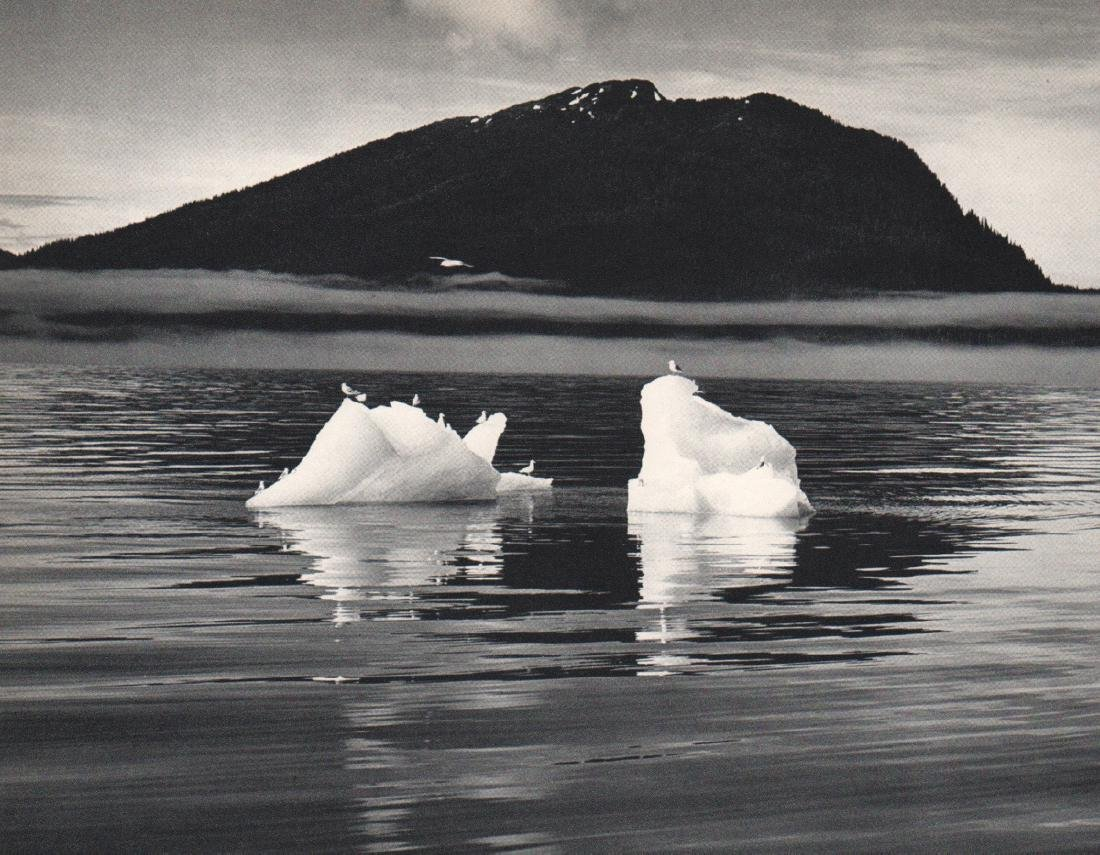 JOSEF MUENCH  - Icebergs