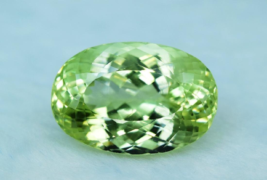 66.10 Carat Kunzite Loose Gemstone - 3