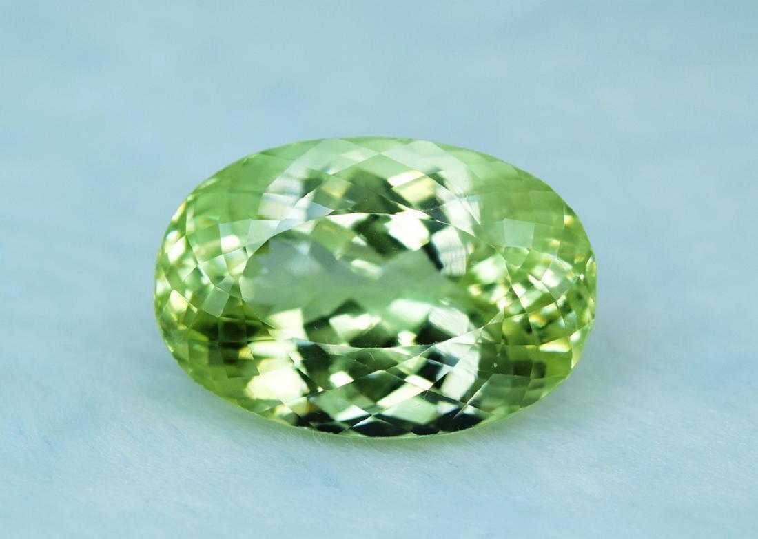 66.10 Carat Kunzite Loose Gemstone - 4