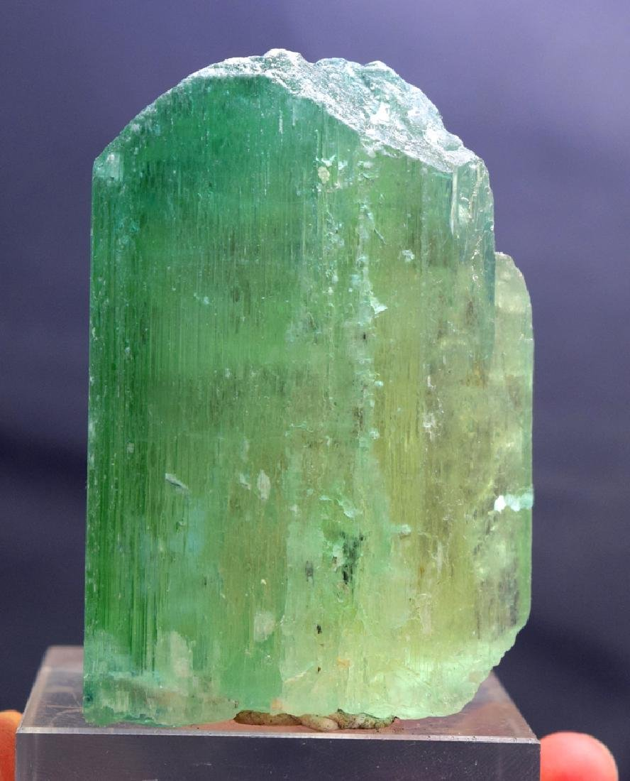 227 Gram Terminated Kunzite Hiddenite Crystal