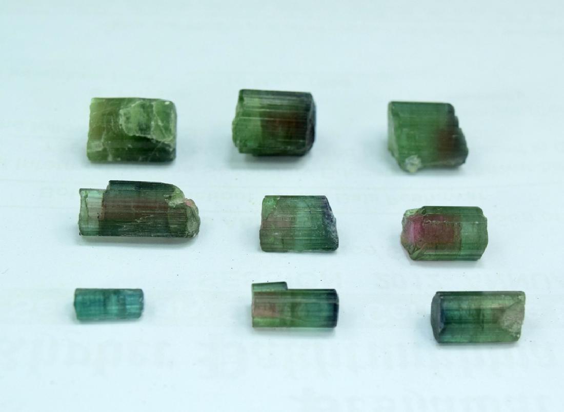 18 gram Natural Watermelon Tourmaline Crystals Lot