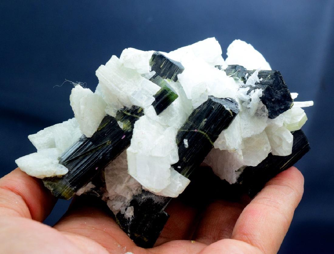 190 Gram Green Cap Tourmaline Crystals with