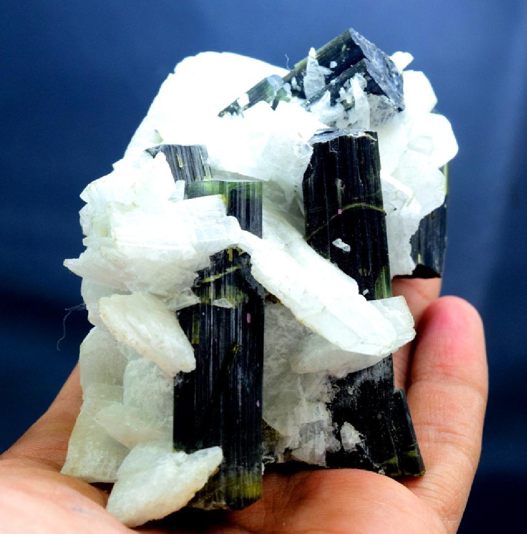 190 Gram Green Cap Tourmaline Crystals with - 2