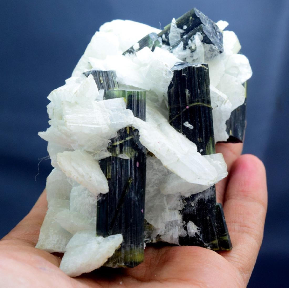 190 Gram Green Cap Tourmaline Crystals with - 3