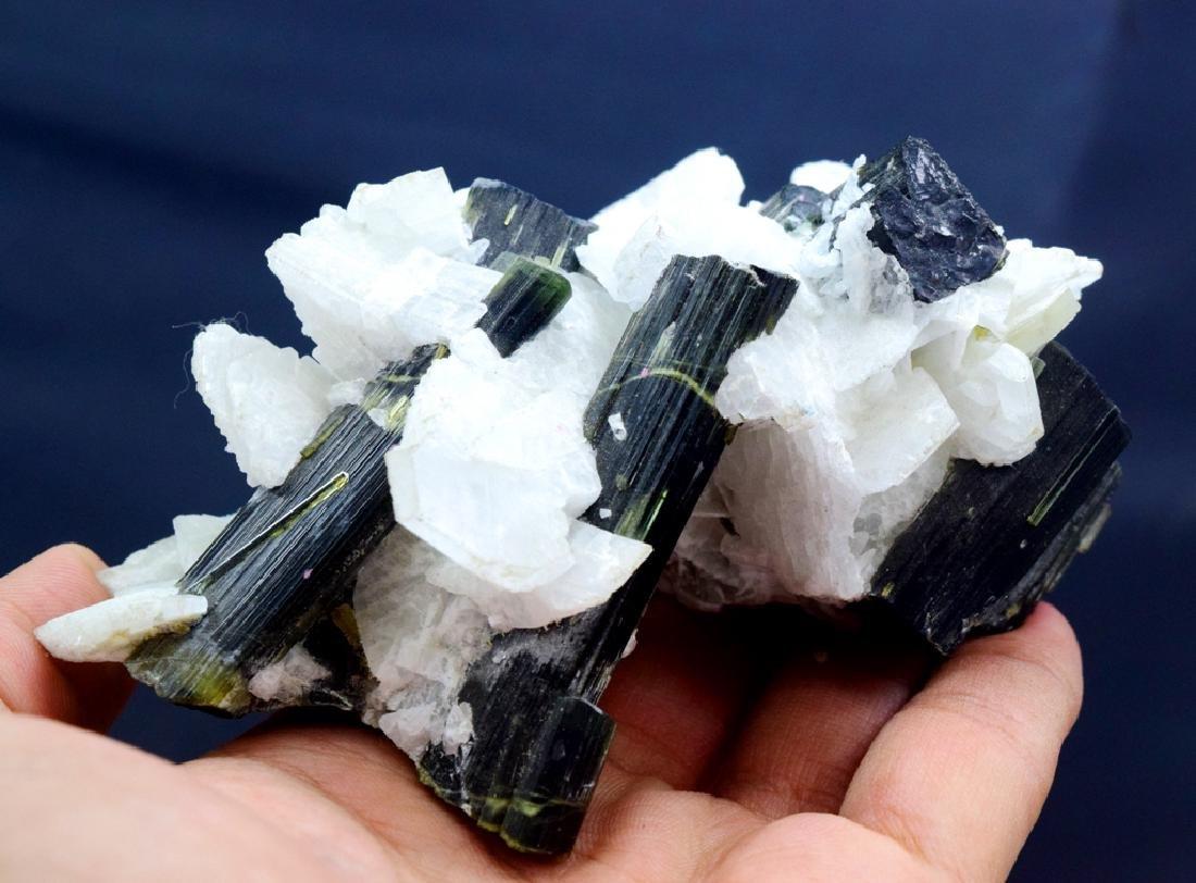 190 Gram Green Cap Tourmaline Crystals with - 5