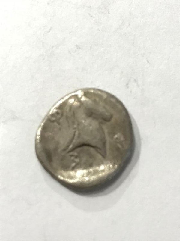 Ancient Greece Pharsalos, Thessaly Coin