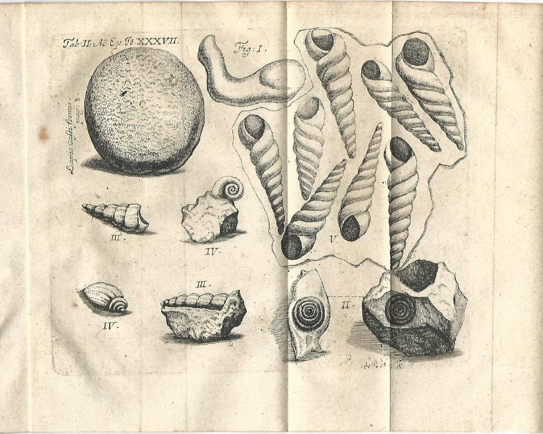 1735 Pamphlet Fossils Geology Bruckmann