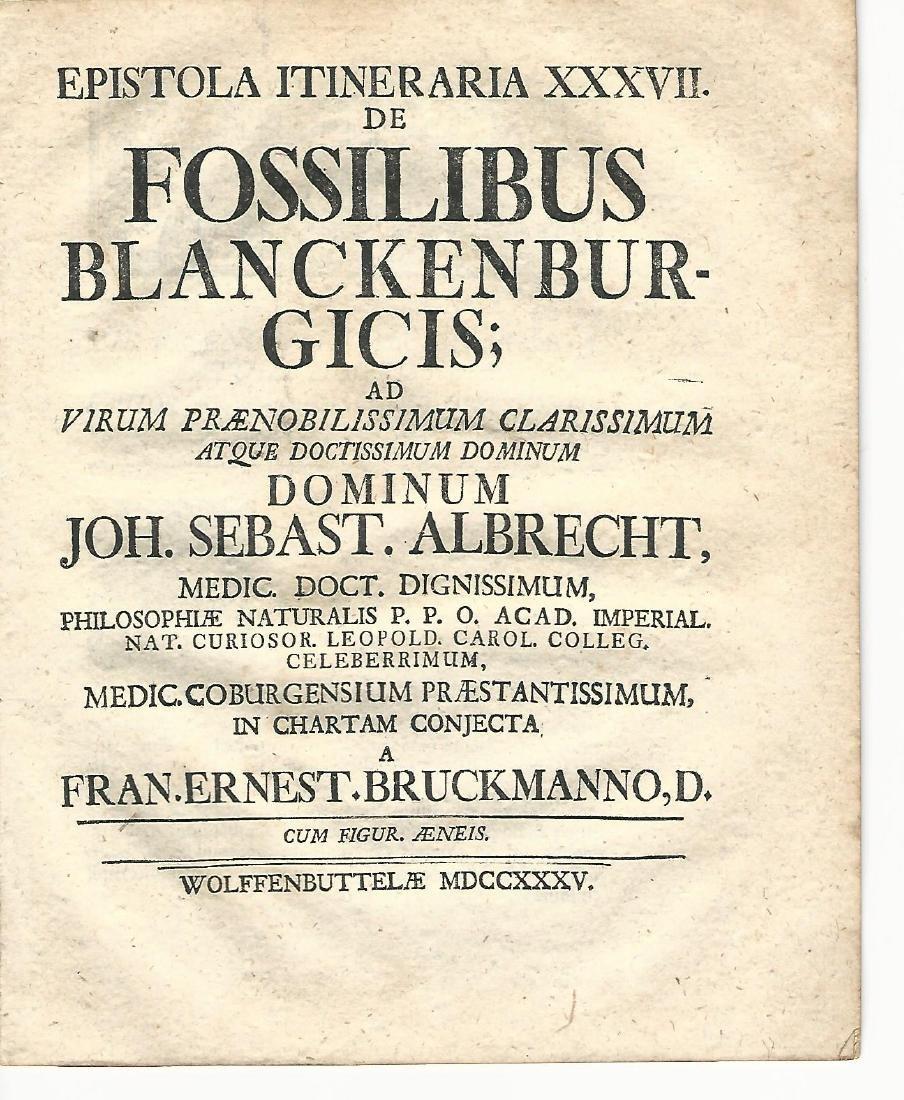 1735 Pamphlet Fossils Geology Bruckmann - 2